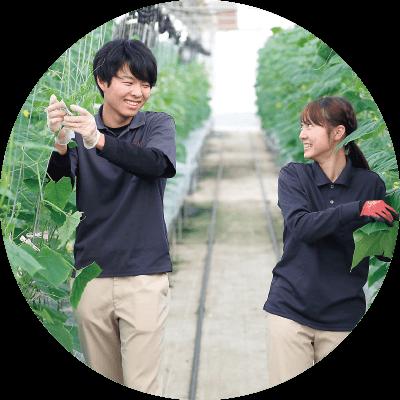 有機農法を実践的に学ぶ