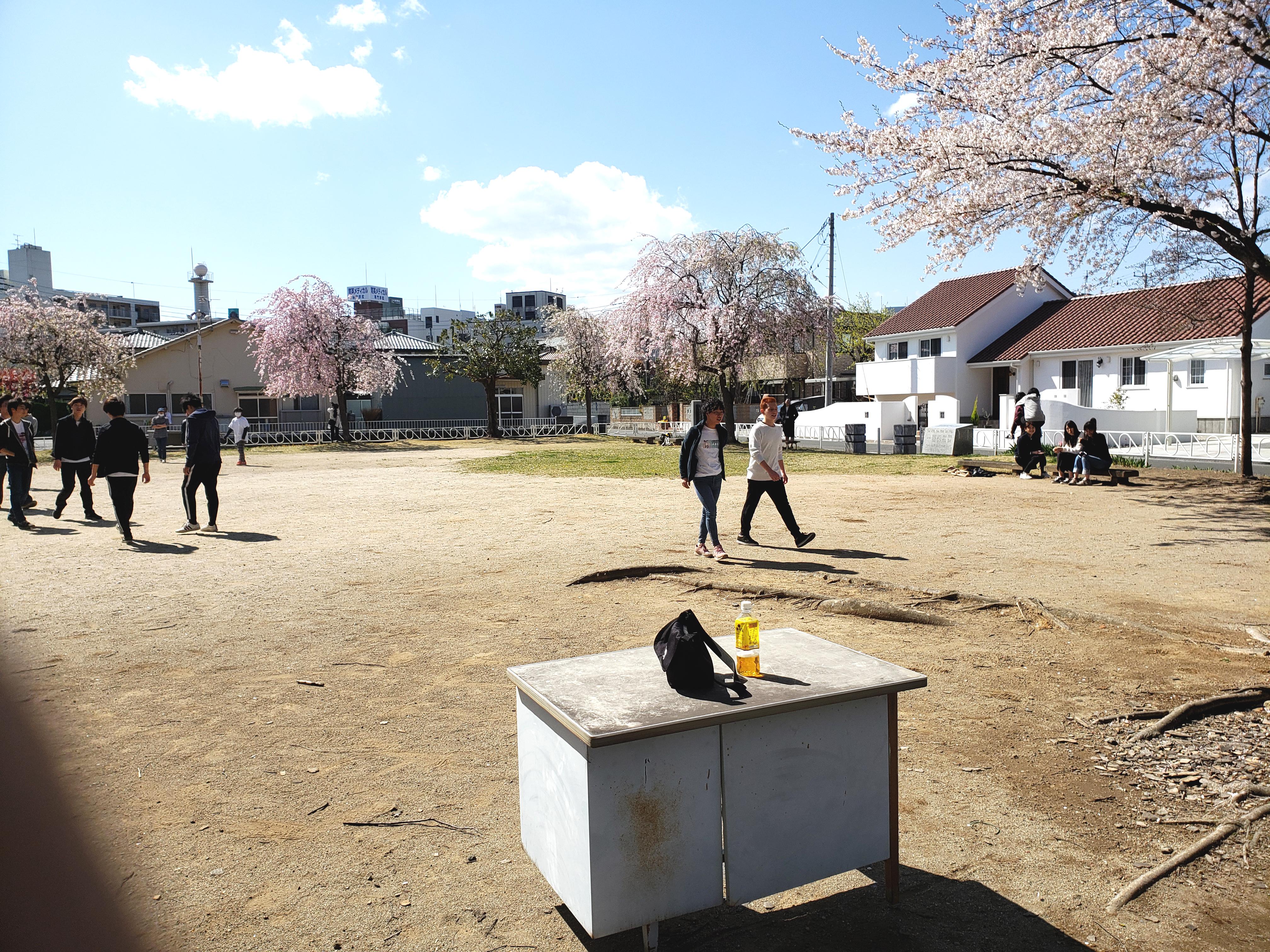会場の古市町公園