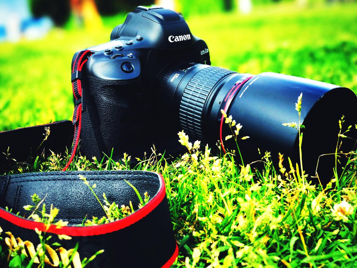 写真イメージ